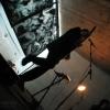 velvettourfest-012-mrdirecteur
