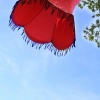 20120527_ambiance-papillonsdenuit_005